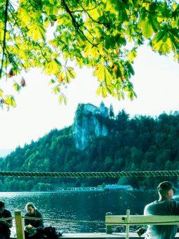 Zamek Biskupów w Bledzie
