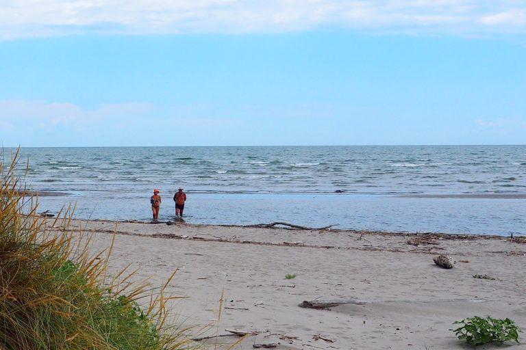 Wydmy i plaża