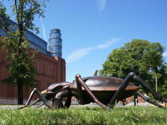 Gigantyczne owady przy Starym Browarze #1
