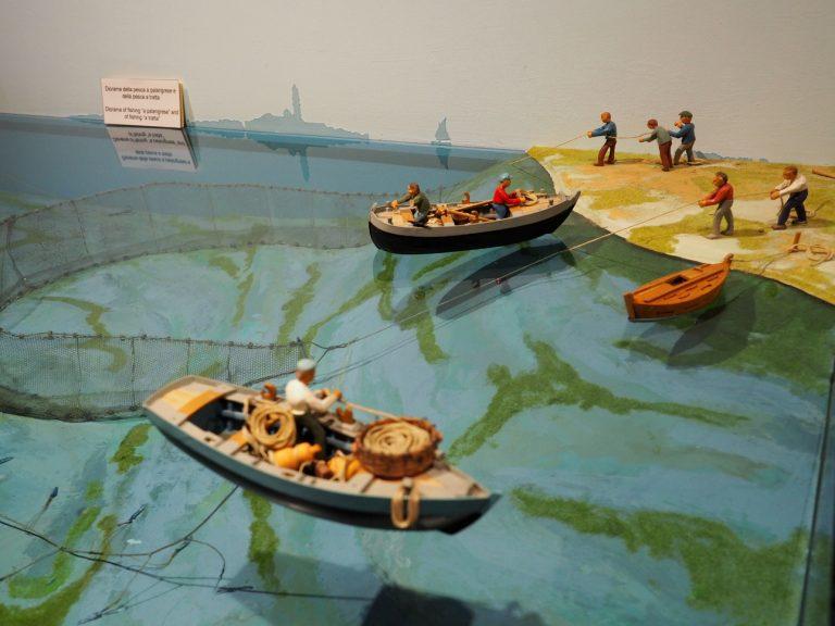 Museo Civico della Laguna Sud #7